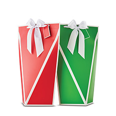 HOLIDAY 2 BOTTLE FOLDING GIFT BOX